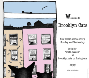 brooklyn cats pic
